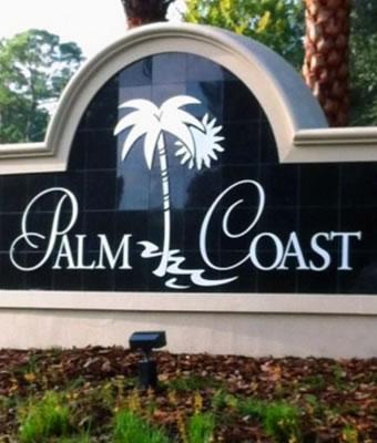 best-tree-removal-service-palm-coast-fl