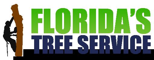 Best Tree Service Company Port Orange Florida
