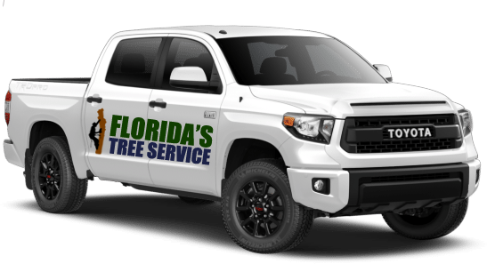 floridas-tree-service-toyota-tundra