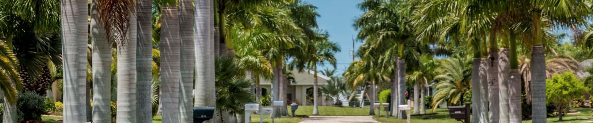 Sanford, FL tree removal services